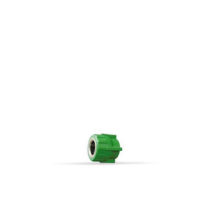 PPR-Verde* União R/Fêmea