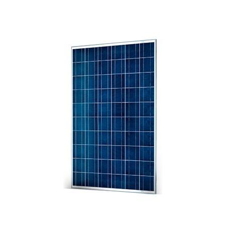 Proteu® Módulo Fotovoltaico Luxor 100M-12V